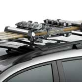2012 RDX 6 PAIR SKI ATTACHMENT